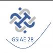 GSIAE 28